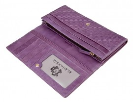 Кошелек Z3105-2599 purple (Eleganzza)