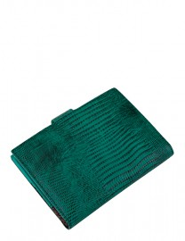 Обложка для водительских документов Z3452-778 green (Eleganzza)