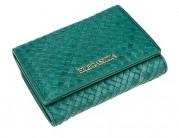 Кошелек Z3105-2584 green (Eleganzza)