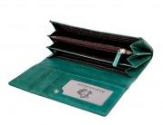 Кошелек Z3105-2599 green (Eleganzza)