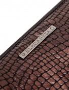 Кошелек Z3270-2899 brown (Eleganzza)